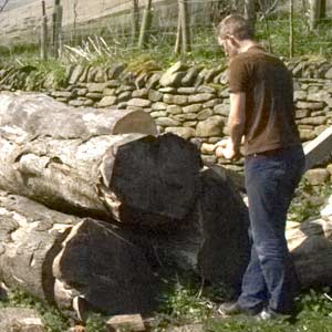 logs being tested